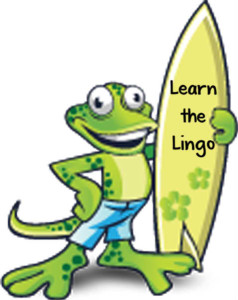 learn-the-lingo-gecko