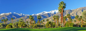 palm-springs-header