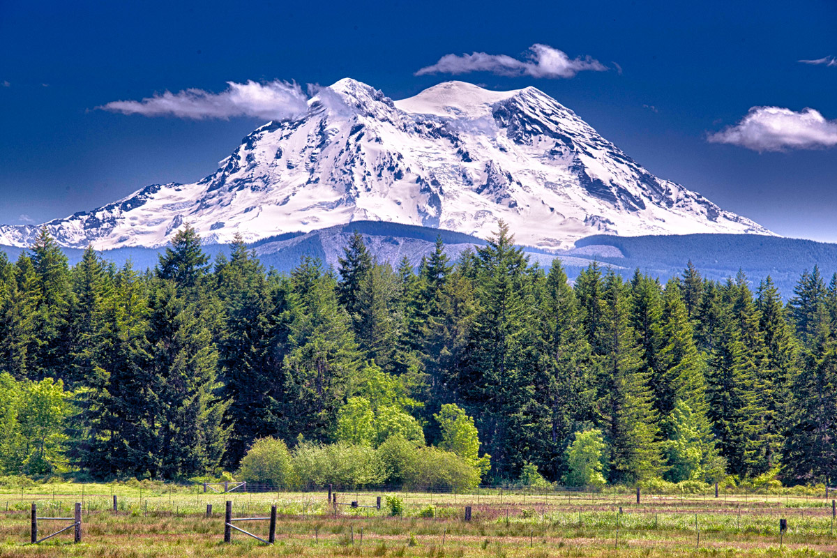 how tall is mt rainer