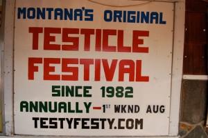 testicle2