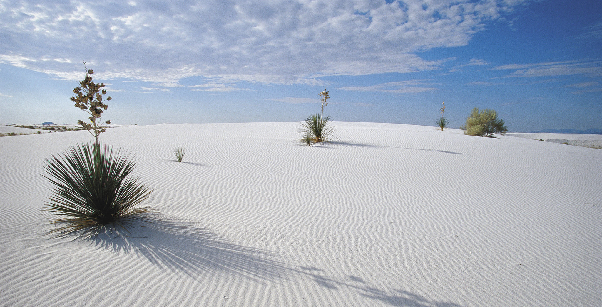 White Sands Our Great American Adventure